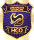 Личная охрана от ООО ЧОО Сибирское согласие НСО в Новосибирске